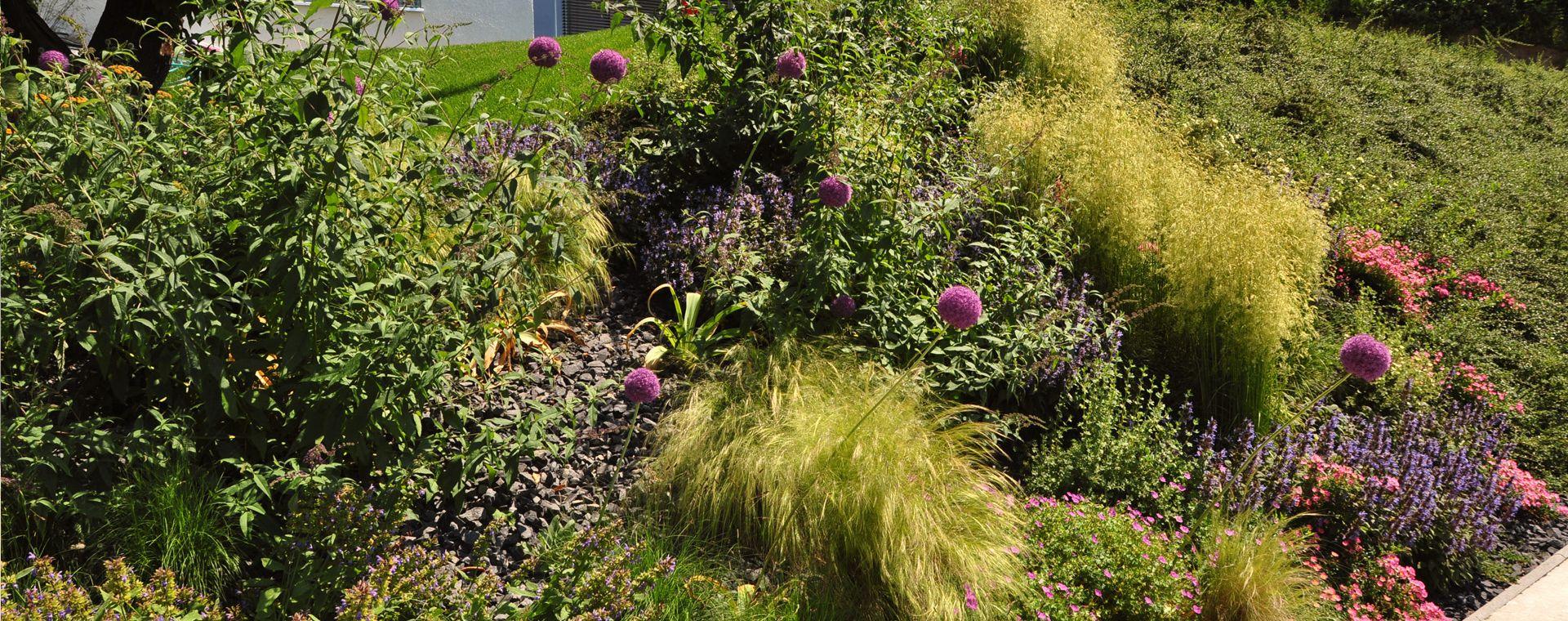 Perennial flower bed Záhorská Bystrica, 2012, SK