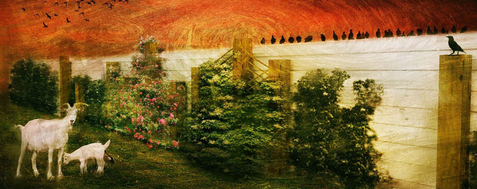Zahrada Malé Vozokany